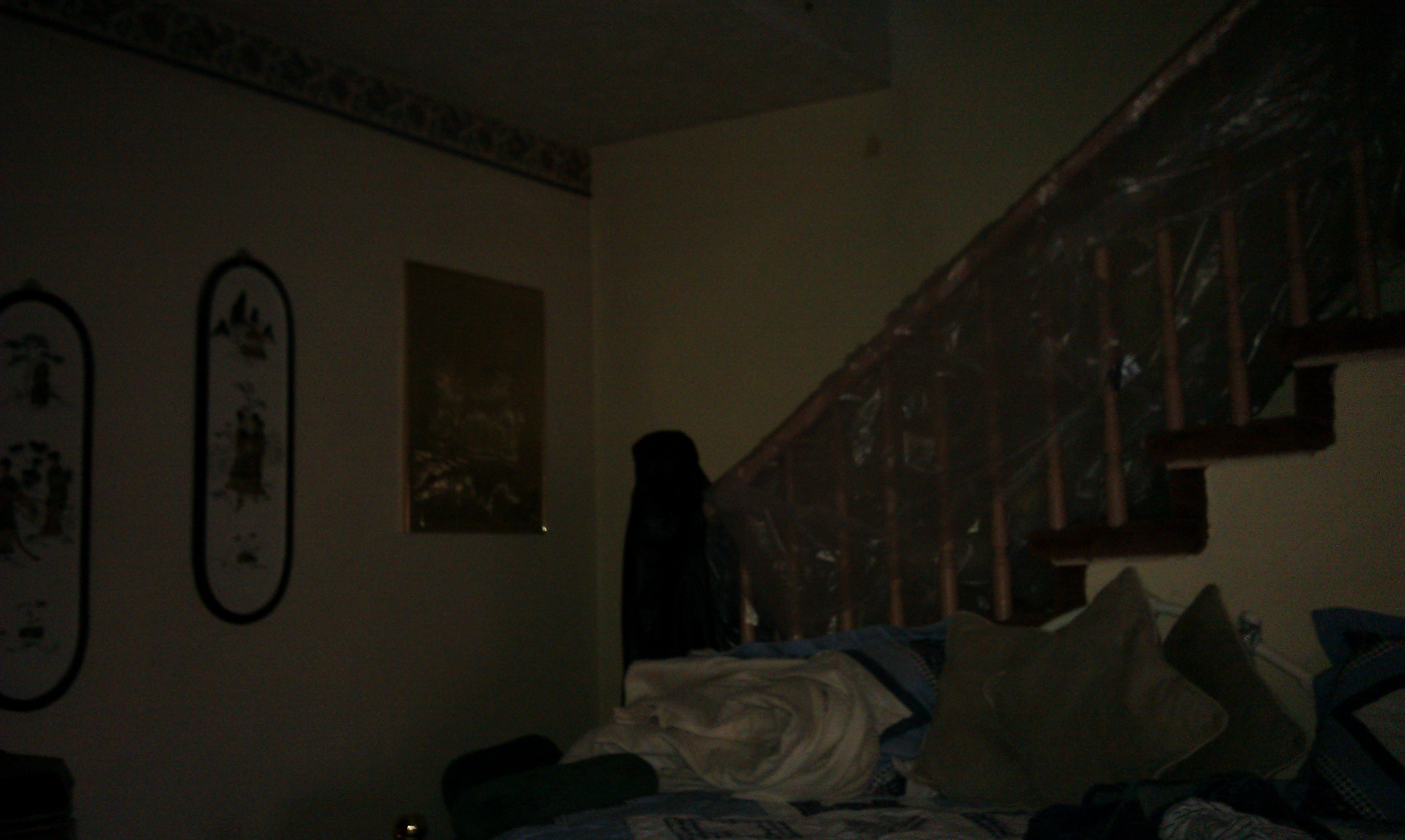 Displaying 19 gt images for scary bedroom at night