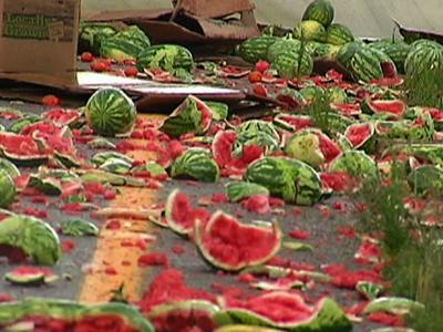 watermelon-road