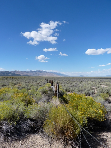 Ruby Valley in Nevada.