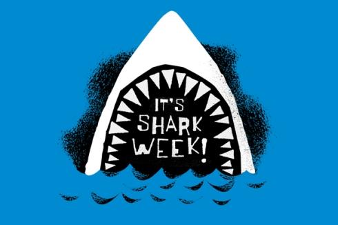 shark-week-04