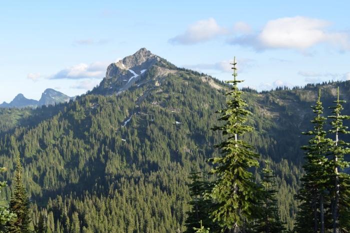Mountains. Trees.
